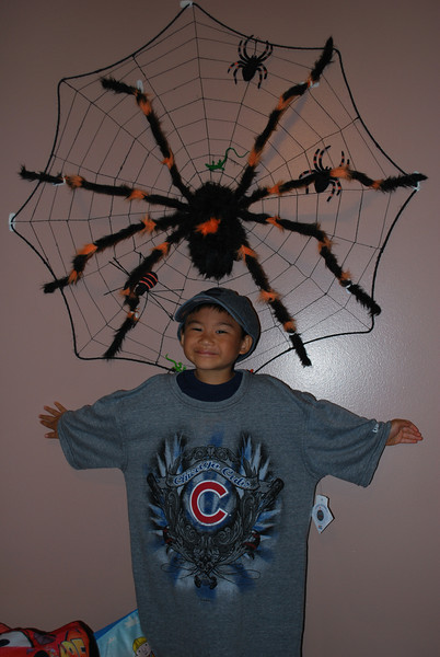 angelo and his tarantulas