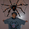 angelo and his tarantulas