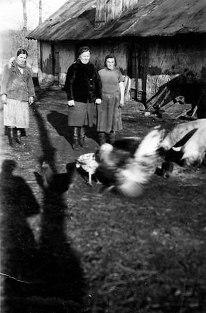 Farm Worker, Rosalia Steink (Todositchuk), Hanka - Wolochisk, Ukraine - 1942