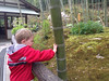 Enjoying the peaceful sounds of Arashiyama Bamboo Forest by Tenryuji Temple - Kyoto, Japan, with Jennifer Meyers Sullivan