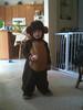 He's a cute little monkey