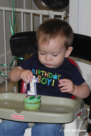 Tomas02Feb12BDay047_Crop4x6