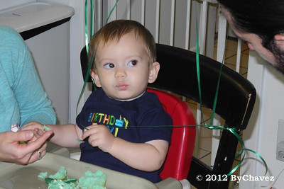 Tomas02Feb12BDay061_Crop4x6