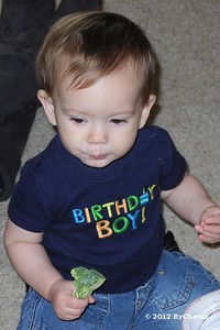 Tomas02Feb12BDay022_Crop4x6