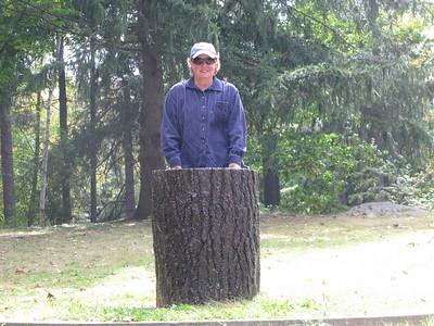 Sue at the Dartmouth Lone Pine Stump