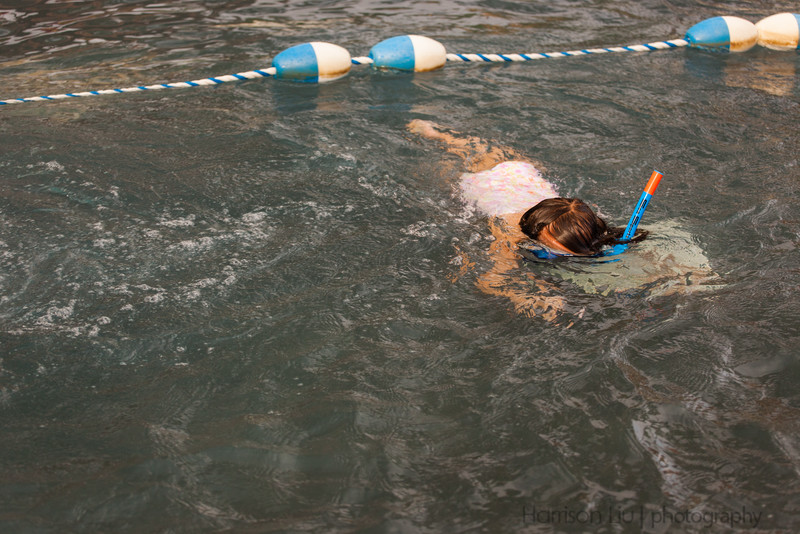 By the time we left, Izzie was a snorkeling machine (in the pool, anyways).