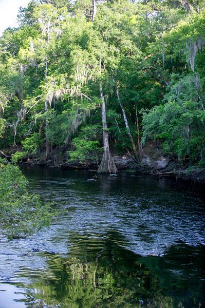 FLORIDA TUBING