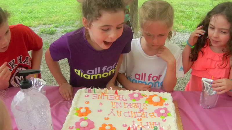 Adeline and Sabrina celebrated their seventh birthday at Simmons Farm where they and 18 of their friends picked strawberries and lettuce and enjoyed a 200 foot slide which was built into a hillside.  According to the music, it might have been the best day of their lives!