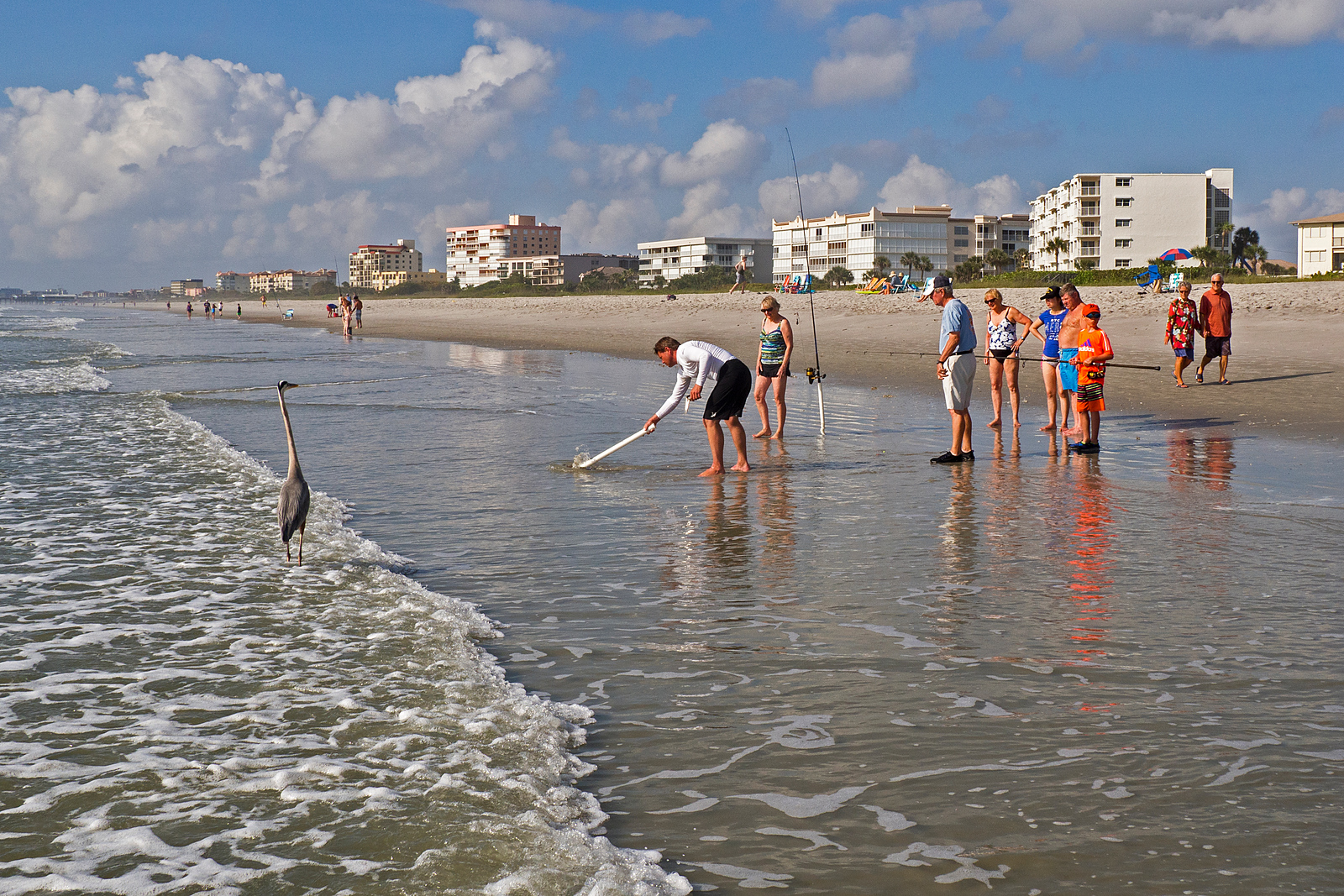 Several people plus a curious heron watching fishermen at the beach