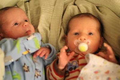 Twins at 4 weeks