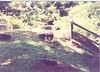 us-visit-zoo5