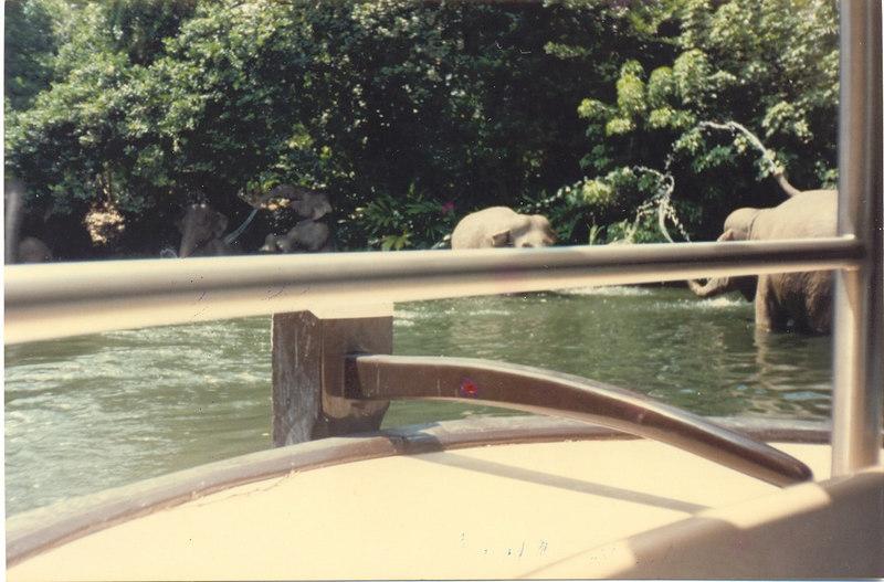 us-visit-florida-disney-safari