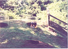 us-visit-zoo2