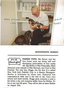 bob and pups