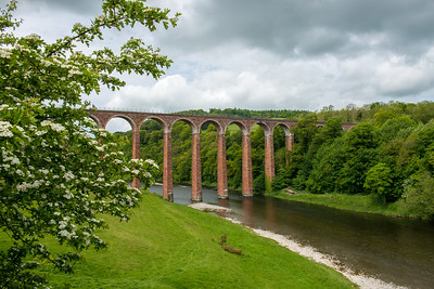 Leaderfoot Viaduct  Scottish Borderlands