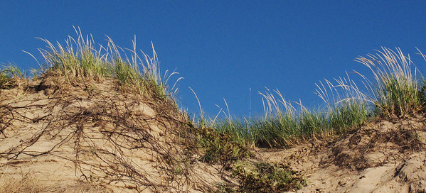 Dunes, grass and sky on Sleeping Bear Dunes.