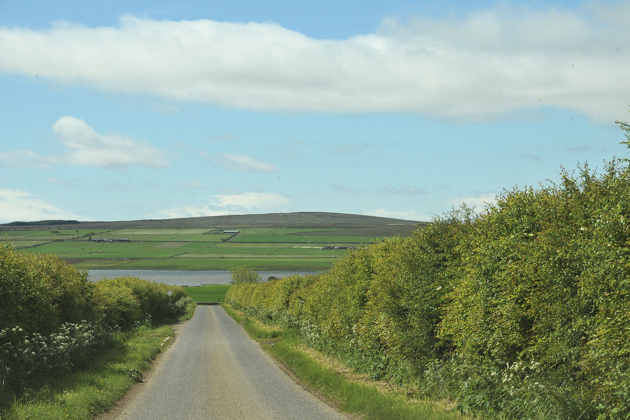 Typical local road. I think that's Loch Watten.