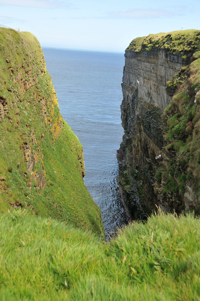 Cove with seagull nests.