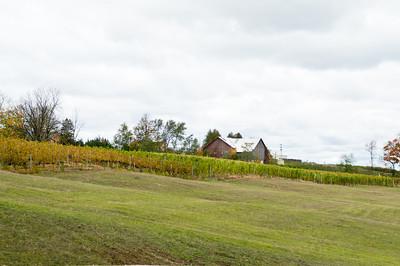 TC wine tour-7908