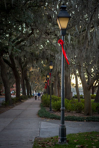 Savannah GA December 2014-0027