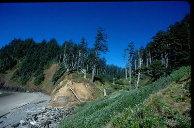 VancouverWashOreCA-Trip0013