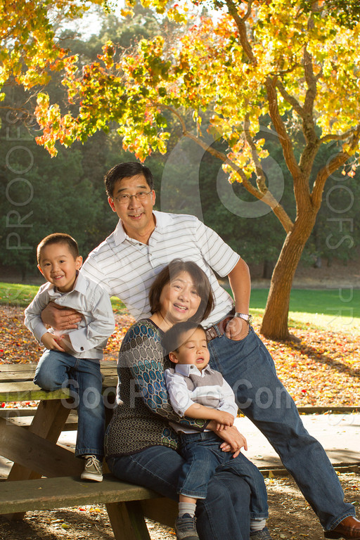 2013-11-17-vanessa-yang-family-6094