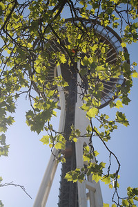 First glimpse of the Space Needle