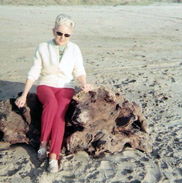 vm on log at beach