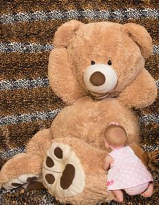 _DSC1684-Bear
