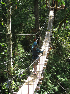 Natalie on a suspension bridge in the forest canopy.