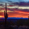 """A New Years Sunset in Arizona-Each year a buddy of mine throws a New Year's Party up next to the Superstition Mountains east of Phoenix in Arizona. Each year as luck would have it there are spectacular sunsets. He lives on the edge of a preserve that is the foothills of what is pretty much a desert wilderness. As it gets dark you hear the coyotes in the distance and you're looking over your shoulder for mountain lions that have been spotted frequently enough in the area. My friend starts summoning me back to the party, saying, """"It's not safe out there alone after dark"""". I yell back,""""Not before I get my shot""""! He never goes out beyond his property without a gun. My only weapon is a tripod with a camera attached. It gets creepy after dusk so I head back with hopefully some good shots. You be the judge, but one thing is for sure ..you can't beat those Arizona sunsets!"""