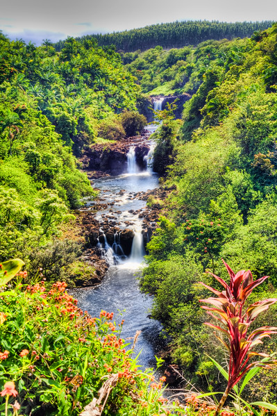 """""""Umauma Falls, Hawaii""""-To see this falls you must enter the World Botanical Gardens on the Big Island of Hawaii. A triple falls with beautiful red cordeline plants in the foreground.<br /> <br /> This was a fun photo to take. I used a vertical pan stitching 3 photos together and then tonemapped with Photomatix to give it a touch of zip. Beautiful gardens abound on this botanical wonderland. I spent half the day photographing in the gardens."""