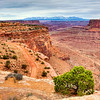 """""""Canyonlands in Utah""""-You feel like you are on top of the world as you stand on the edge of these canyons outstretched to the snow-capped La Sal Mountains off in the distance. It's another one of those places that gives you the heebie-jeebies if you stand to close to the edge. With the wind swirling in all directions I got as close as I was willing to go. Cloud formations were perfect for HDR imagery and I took this late in the day. No one else around, it was great!"""