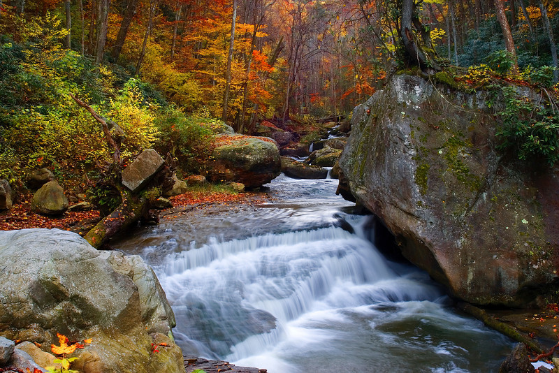 """Autumn at Wolf Creek, West Virginia-I flew out from Phoenix to spend a week exploring West Virgina in the autumn. New River Gorge was one of my planned destinations. Years ago we had stopped here and did a little hiking and I always wanted to come back. This time I was prepared, or so I thought I was. I had come with 3 camera format options:; large format, medium format and digital. I was never big into large format, because well it was big and heavy and hard to hike with. I did not bring a big enough tripod, so by mid day after hiking a mile to waterfalls, I lost patience and muscle and packed it away. It was expensive, $4.00 each time I took a picture. This photo of cascades on Wolf Creek, not far from underneath the New River Gorge in West Virgina, was one of my favorites of the trip. I used the digital camera this time. It was sunset, deep in a valley and was quite dangerous to take. This perspective took balancing my tripod on 3 rocks on top of a cliff, with nowhere to stand. I had no way to use the viewfinder, so I just kept shooting and adjusting until it worked. One of those """"don't try this at home"""" moments.<br /> <br /> P.S: The airlines broke the large format camera into pieces on the way back to Phoenix. I put it on E-bay and sold it to some guy in Alaska who bought it for parts, for what I paid for it. Easy come, easy go!"""