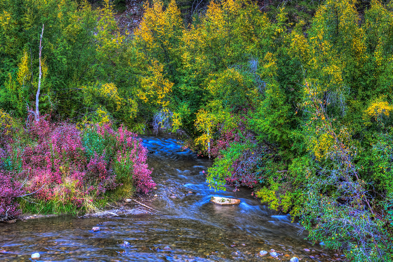 Utah Autumn<br /> Beautiful autumn leaves at every turn when you drive through many of the valleys through out the mountains above Salt Lake City. With the drive this time of year!