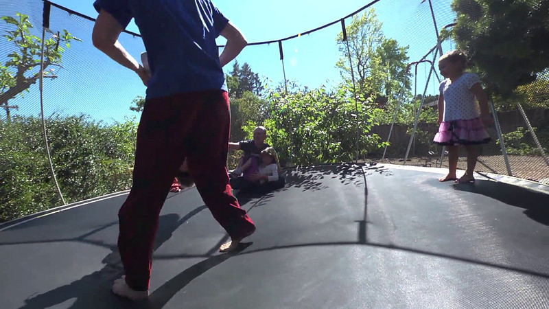 Wild things on the trampoline