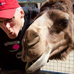 San Diego Zoo 2011, Ben's 34 birthday, Legoland 2011, Evie's 3rd birthday, magic Baldy bus, Park City 2012