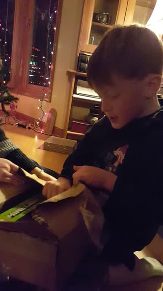 Mason and Lila opening presents. Minecraft Legos!