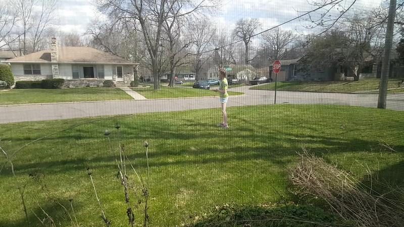 Front yard gymnastics
