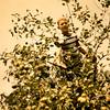 John in tree.