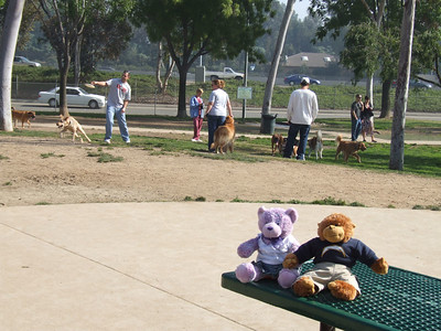 "We start at the ""Bark Park"" in Costa Mesa, near the OC Fairgrounds"