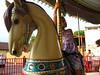 Savanna on horse