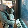 At The Monterey Aquarium