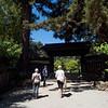 Visit to the Hakone Japanese Gardens