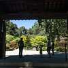 Nakone Japanese Gardens
