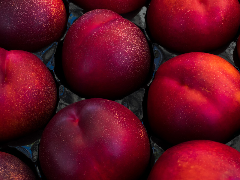 Plums at Mountain View Farmer's Market