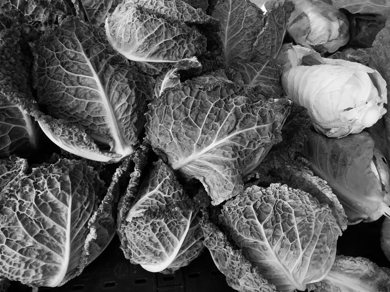 Cabbage on B&W