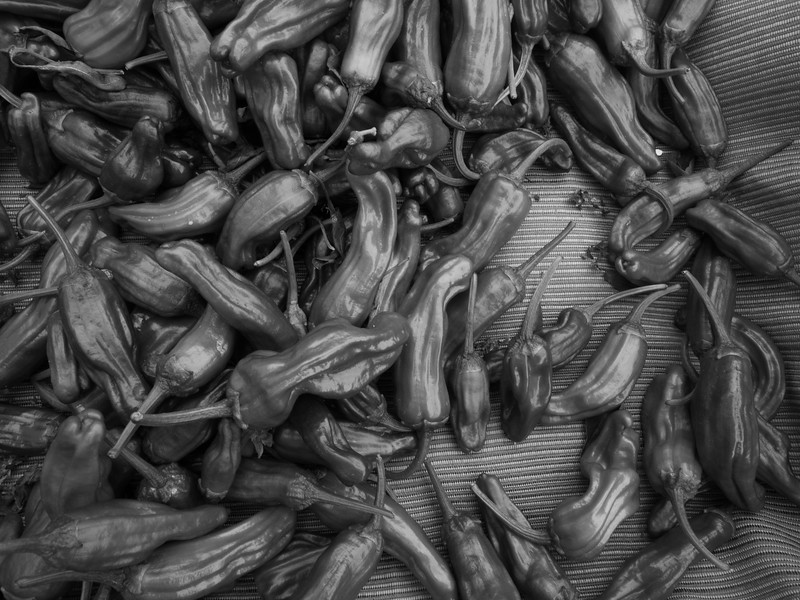 Peppers in B&W