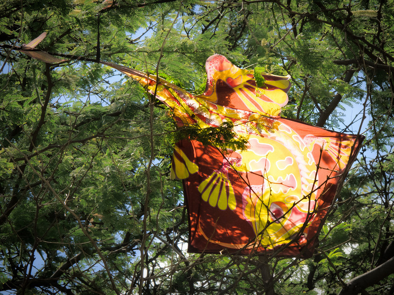 A kite caught in a tree.