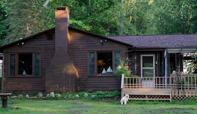 We've arrived and Biggie's in his beloved backyard.
